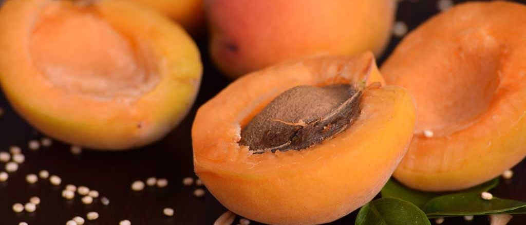 10 Amazing Health Benefits of apricots